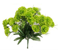 21 Lime Green Carnations